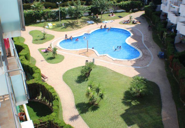 Appartement à Rosas / Roses - R. Marine II 231 - Piso con piscina, Roses