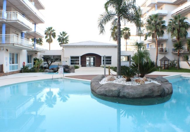 Apartment in Rosas / Roses - P. CANIGO I 119 -Pisco con piscina y WIFI