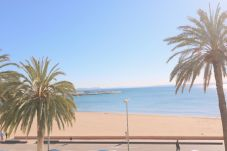 Ferienwohnung in Rosas / Roses - RHODE 1 Piso, 1ª linea de mar, Roses,...