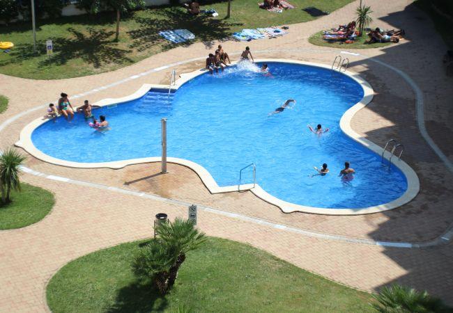 Ferienwohnung in Rosas / Roses - R. Marine II 231 - Piso con piscina, Roses